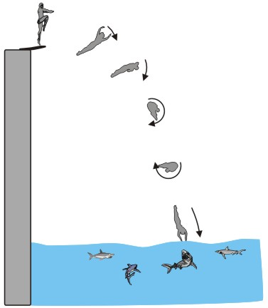 The Open Door Web Site Ib Physics Examples Of Conservation Of